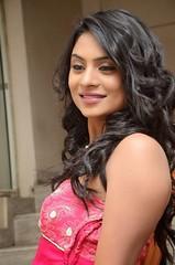 South Actress Deepika Das Hot in Pink Dress- Photos Set-6 (1)