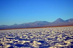 Chile_2014_6913