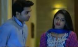Saya e Dewar Bhi Nahi Episode 16 Promo Full by Hum Tv Aired on 23rd November 2016