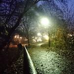 """Höstmorgon. Autumnmorning. #autumn #morning #morgon #NAhöst #shockholm #Stockholm #visitstockholm #awesomepicture #z5compact #visitsweden #nofilter <a style=""""margin-left:10px; font-size:0.8em;"""" href=""""http://www.flickr.com/photos/131645797@N05/22357227093/"""" target=""""_blank"""">@flickr</a>"""