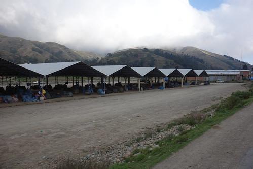 Des hangars abritent les récoltes