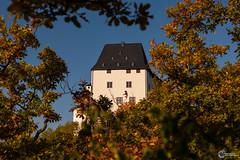 Herbst an der Saaleschleife-3