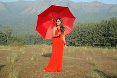 South Actress Deepika Das Hot in Red Sari Photos Set-5 (5)