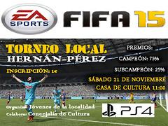 CAMPEONATO FIFA copia