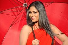 South Actress Deepika Das Hot in Red Sari Photos Set-5 (9)