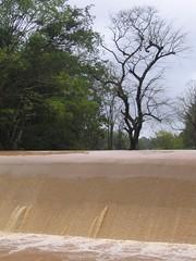 Kollibacchalu Dam -Malenadu Heavy Rain Effects Photography By Chinmaya M.Rao   (77)