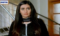 Dilli Walay Dularay Babu Episode 14 Full by Ary Digital Aired on 26th November 2016