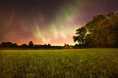 AL_Simmering Night