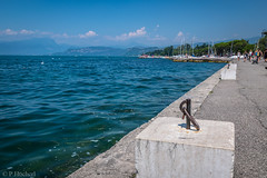 """Lazise 2016 • <a style=""""font-size:0.8em;"""" href=""""http://www.flickr.com/photos/58574596@N06/30853250941/"""" target=""""_blank"""">View on Flickr</a>"""