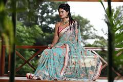 South Actress Deepika Das Traditional Photos Set-1 (7)