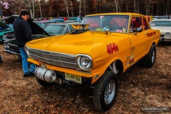 Pumpkin Run 00018