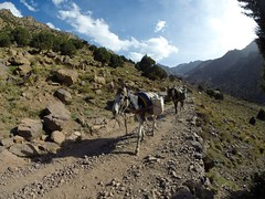Between Imlil and Refuge du Toubkal