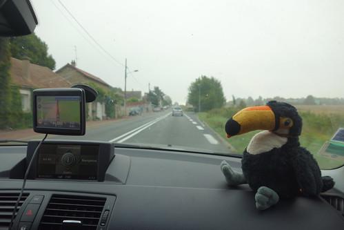 Eh oui, Pelico se repère grâce à un GPS :)