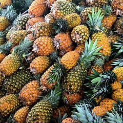 Beneath the occasional overpass today has been someone with a pile of pineapples selling fresh pineapple juice. Got myself a delicious liter for $1.66. At the next one I'm picking up the pineapple juice with lime and chili powder in it. #theworldwalk #tra