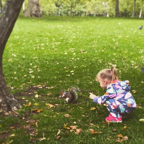#squirrel & #child  @ #StJamesPark #BuckinghamPalace #London #LDN  #traveloup