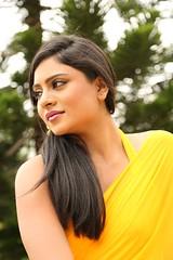 South Actress Deepika Das Hot in Yellow Sari Photos Set-2 (4)