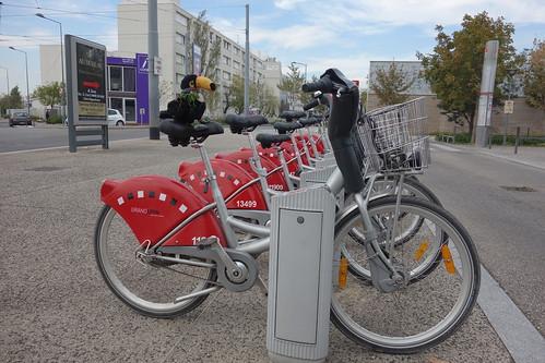 Pour entamer le week-end, Pelico a le choix entre le Velov', le service de vélo partagé lyonnais ...