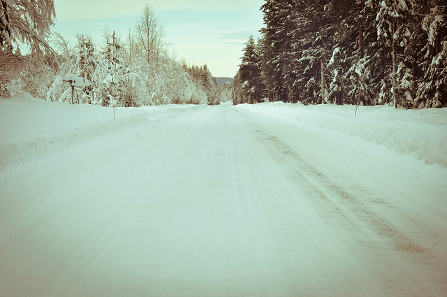 Empty winter road