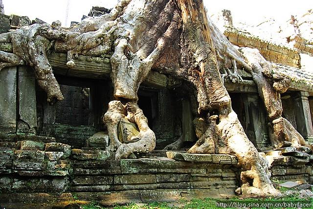 BKK_Angkor 877
