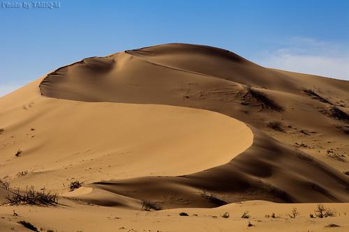 Desert Dunes by TARIQ-M