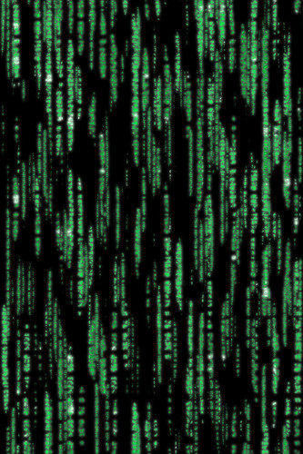 Matrix - iPhone Background