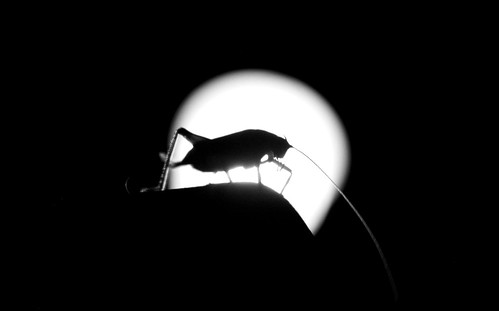 El Dueño de la Noche