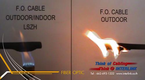 Fiber Optic LZSZH vs Indoor