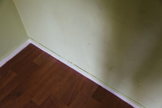Master Bedroom Damages