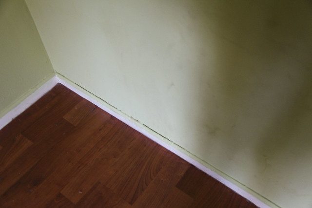 Master Bedroom Damages