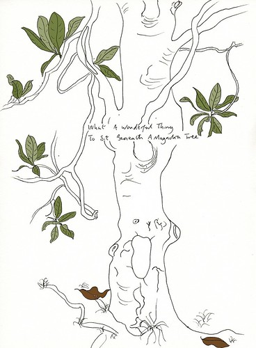 Magnolia by Ben-C.