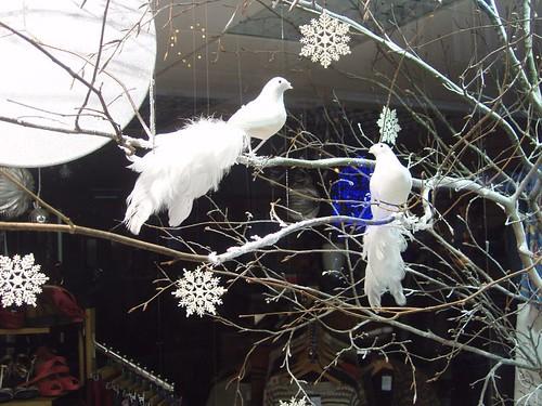 201012250229_Christmas-shop-window