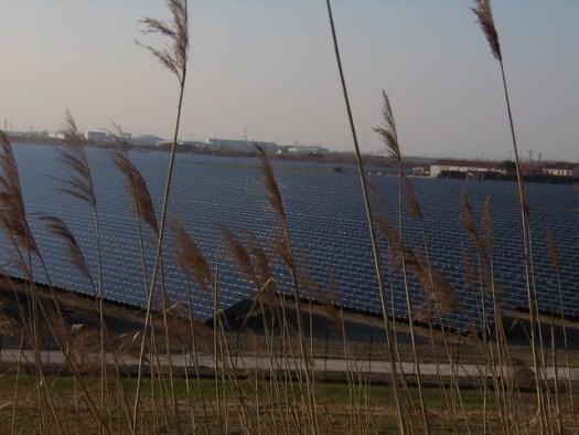 un Po di pannelli solari