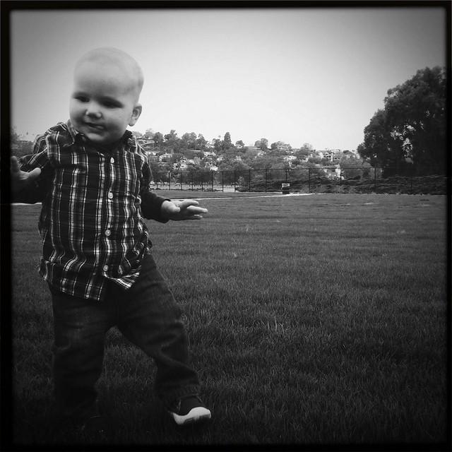 Meadow!
