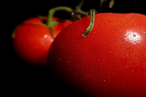 vine-ripened tomatoes [smartphone wallpaper]