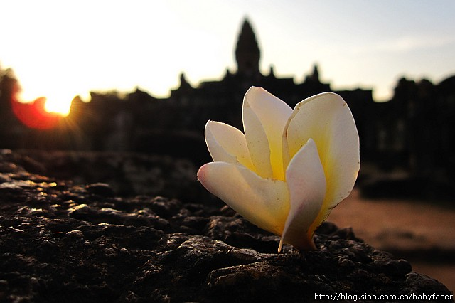 BKK_Angkor 1347