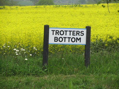 Trotters Yellow Bottom