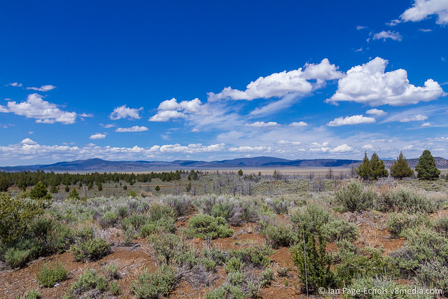 Red Dirt, Scrub Brush, Trees, Clouds