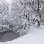 El canal helado en el bosque de nieve