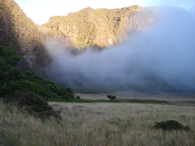 Paliku in Haleakala Crater