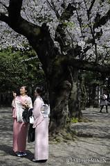 靖国神社.Yasukuni Shrine .東京 日本 Tokyo Japan
