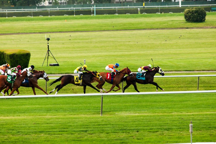 One of the races before the Belmont Stakes.