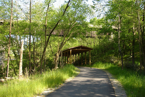 Upper Neuse Greenway 104