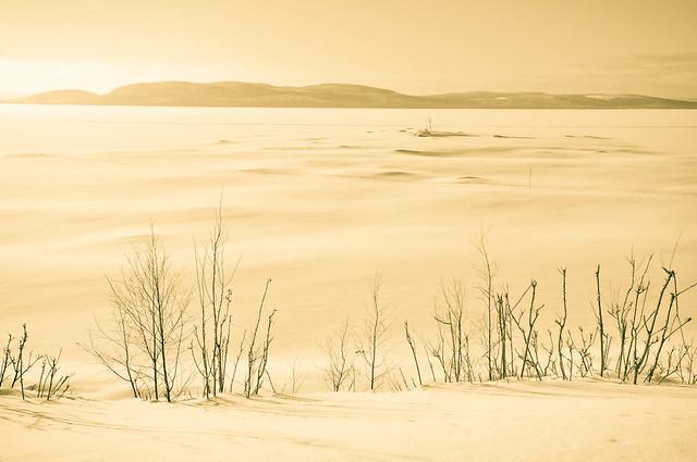 Ethereal frozen lake