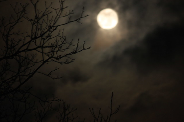 Moonin' - almost there! Spooky!