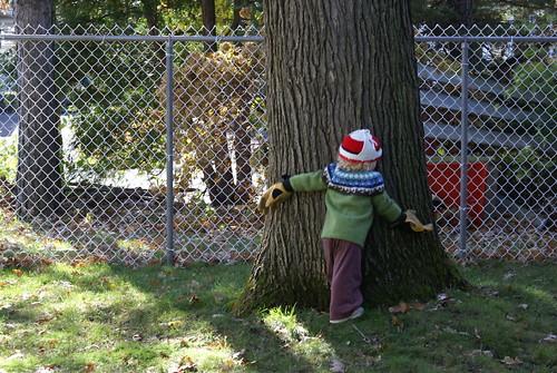 treehugger1