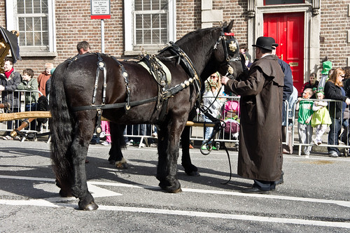 stpatricksfestival2011