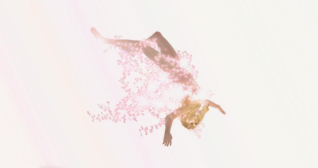 Runo Runo~ Cherry Blossom Petals Snapshot_30892