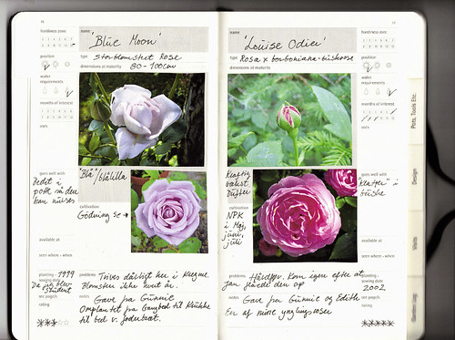 Moleskine Passions Gardening Journal - Roses by Seayard