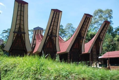 Uniquely Toraja