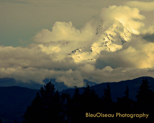 mt hood in the clouds